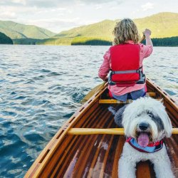 A girl wearing a red life jacket and her white fluffy dog are in a wooden canoe paddling on Detroit Lake