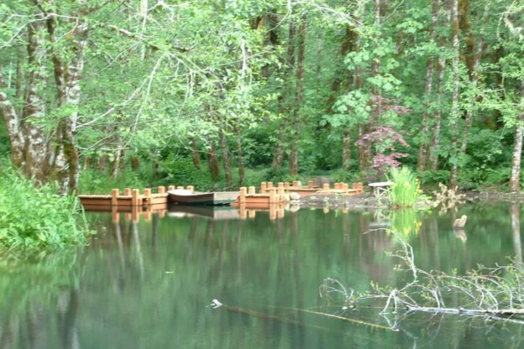 A boat is moored to a wooden dock on still water, surrounded by trees