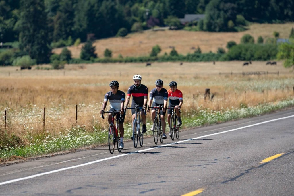 Four cyclists ride in close formation along a paved country road lined by a tan grassy field and wildflowers.