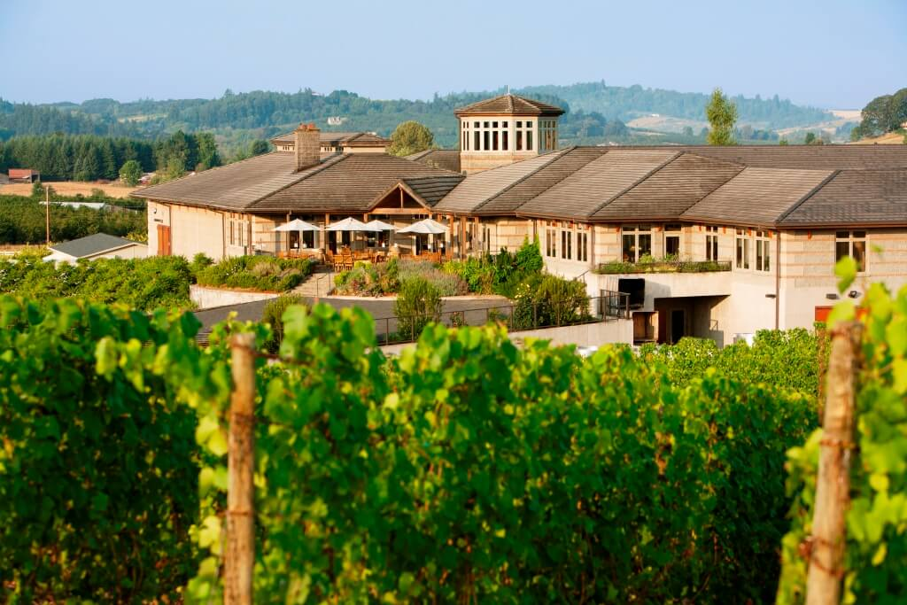 A winery building with vines growing in the foreground