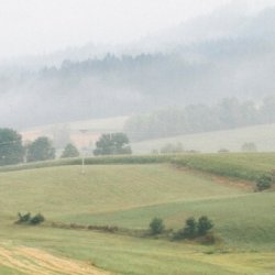 A light mist hangs in the air above rolling grassy hills.