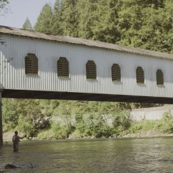 A white covered bridge spans the McKenzie River where a man is fly fishing.