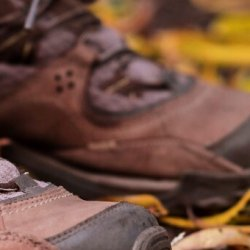 A closeup of hiking shoes on leaves on the ground