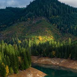 The teal waters Foster Lake flow beneath banks that are heavily wooded with evergreen trees.