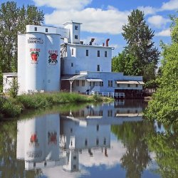A white building and three silos sit on the bank of a river at the historic Thompson's Mills.