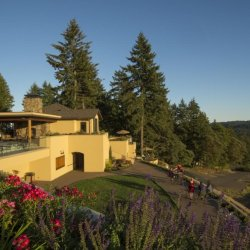 A buttery yellow winery building sits on the top of a hill overlooking the vineyards.